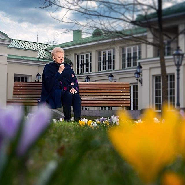 President #DaliaGrybauskaitė #krokai #pavasaris2017