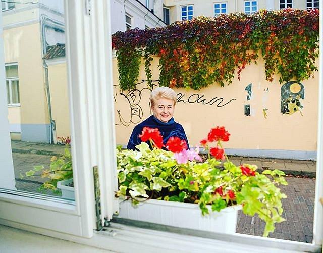 #DaliaGrybauskaitė #oldtown #windows