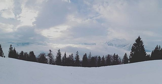 #wintersun
