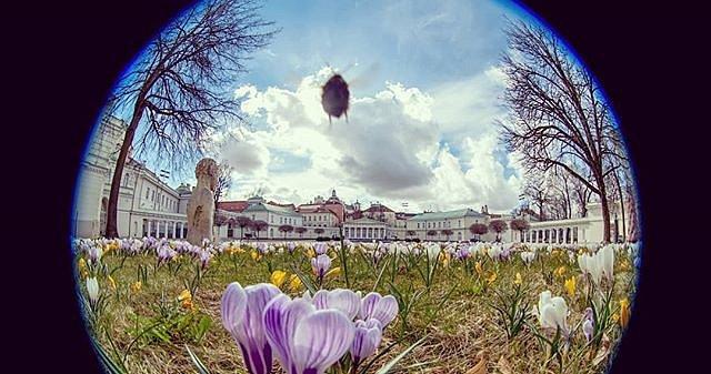 Štai ir #pavasaris rūmuose. #VilniusOldTown  #spring2019